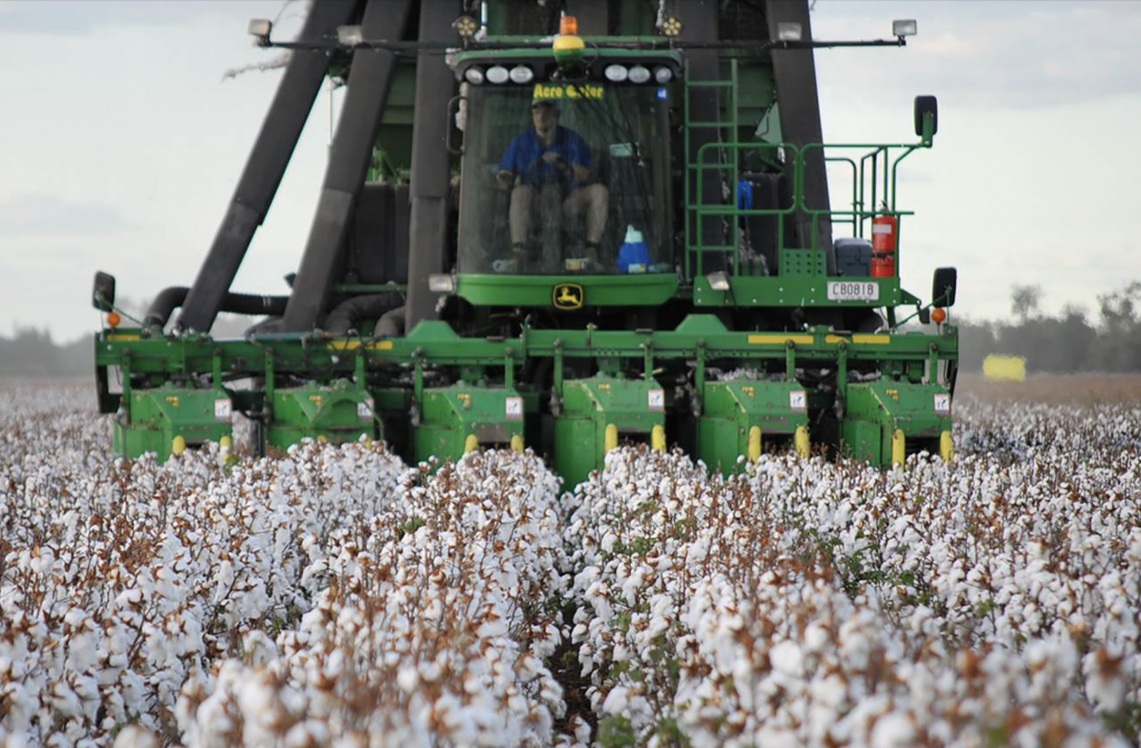 Greenhouse-Gas-Emissions_Better-Cotton-Initiative-Sustainability-Issues_2
