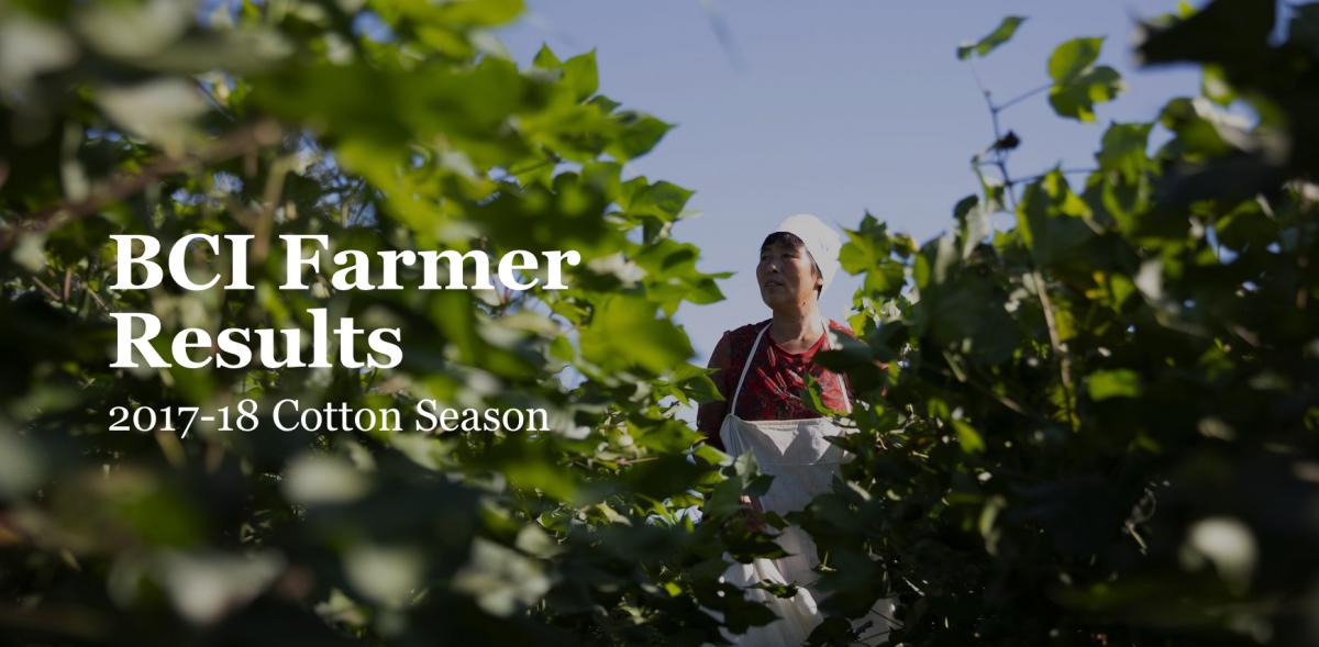 BCI Farmer Results 2017/18